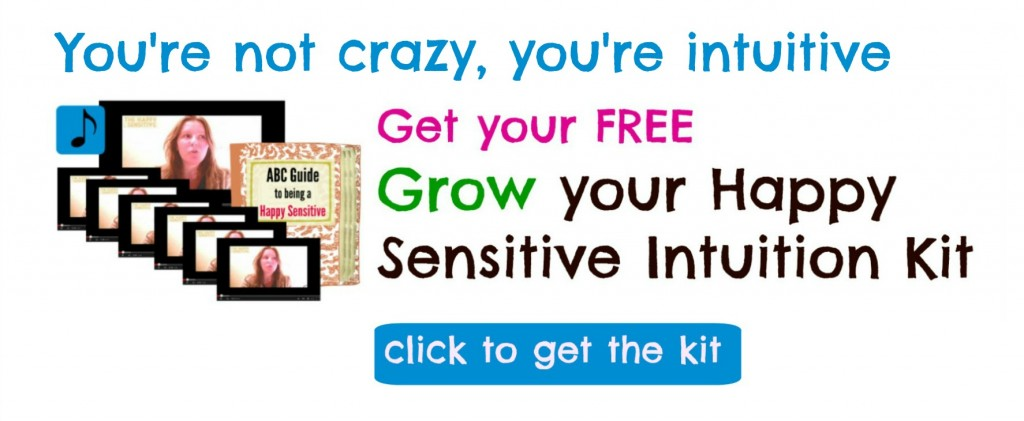 not crazy hsi kit click banner
