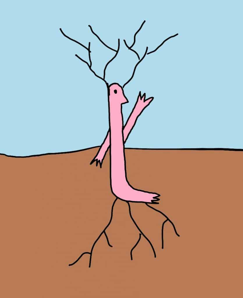 drawn illustration of hsp with roots coming out of feet and head
