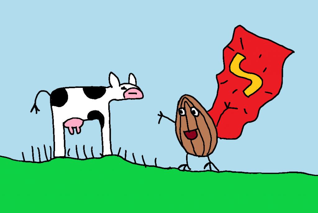 drawing of cow and almond super hero for whey versus vegan protein shakes